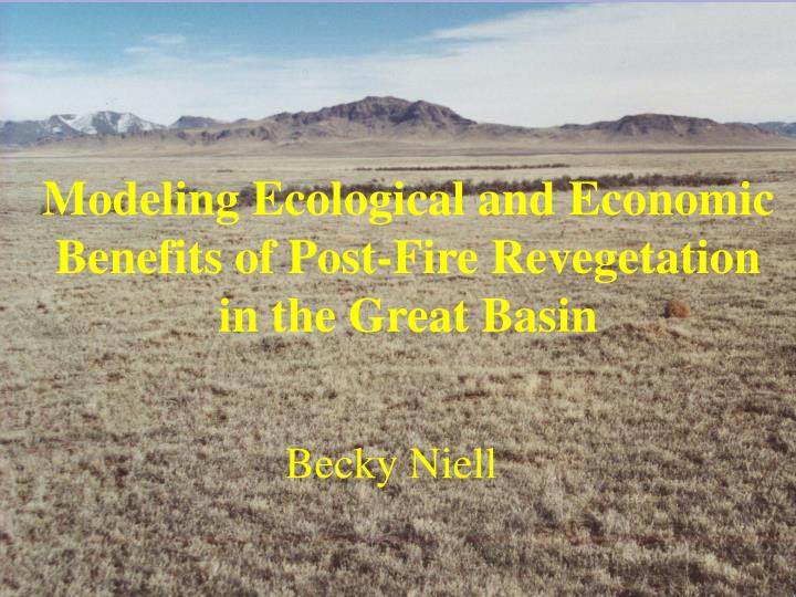 Modeling ecological and economic benefits of post fire revegetation in the great basin