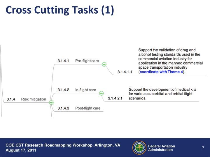 Cross Cutting Tasks (1)
