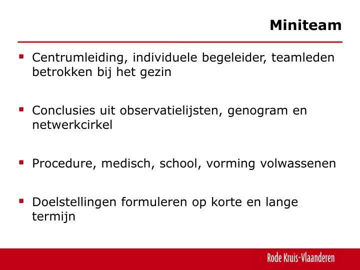 Miniteam