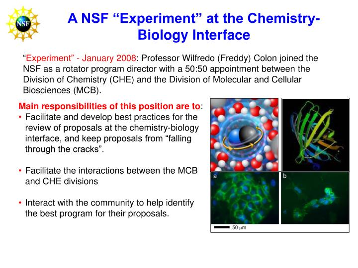 "A NSF ""Experiment"" at the Chemistry-Biology Interface"