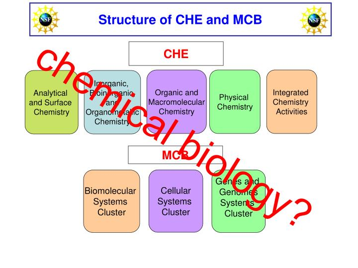 Structure of CHE and MCB
