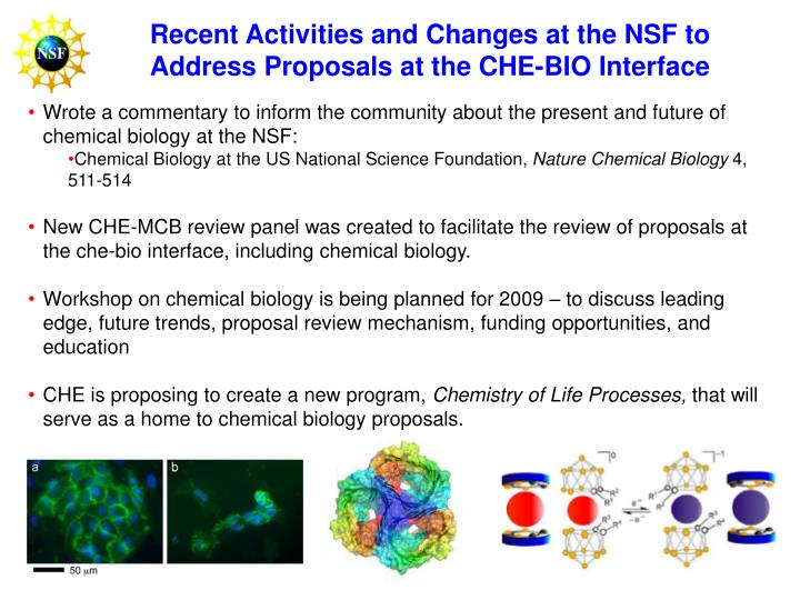 Recent Activities and Changes at the NSF to Address Proposals at the CHE-BIO Interface