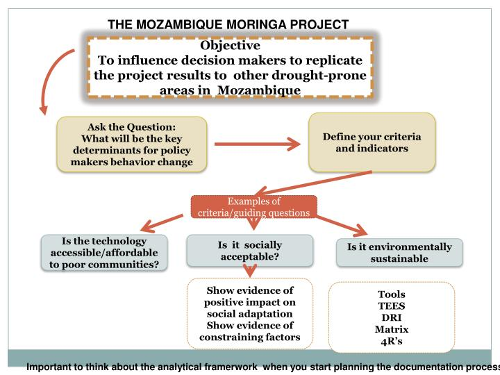 THE MOZAMBIQUE MORINGA PROJECT
