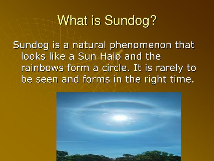 What is sundog