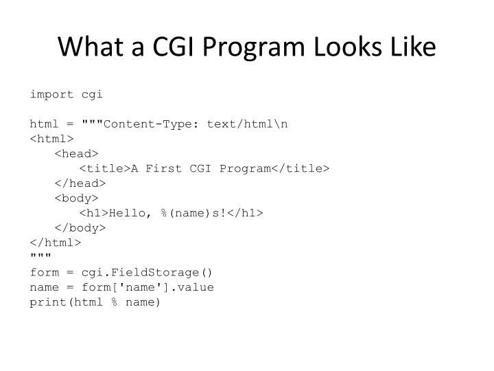What a CGI Program Looks Like
