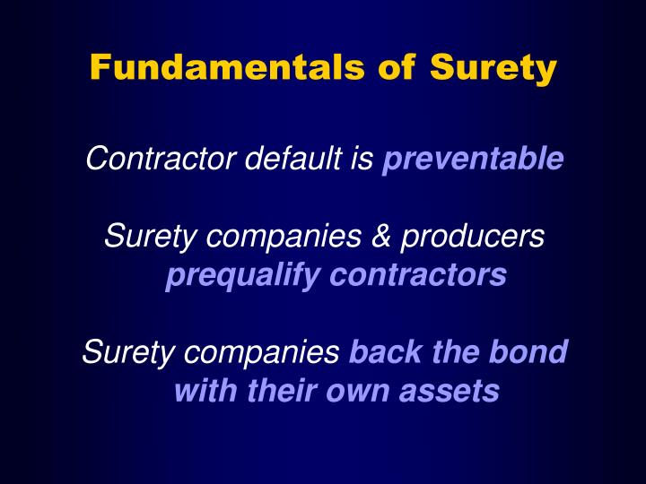 Fundamentals of Surety