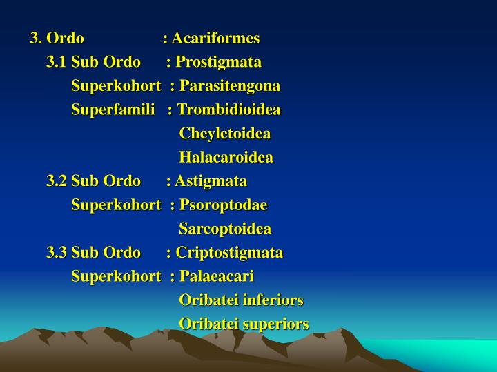 3. Ordo                   : Acariformes
