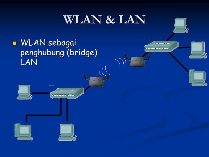 WLAN & LAN