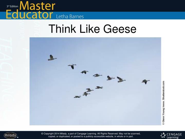 Think Like Geese
