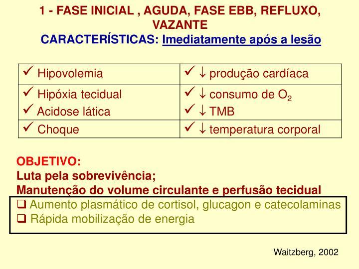 1 - FASE INICIAL , AGUDA, FASE EBB, REFLUXO, VAZANTE