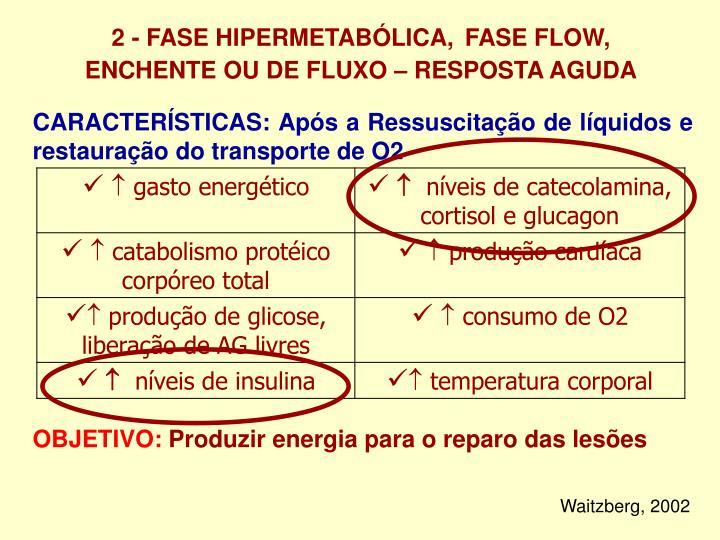 2 - FASE HIPERMETABÓLICA,