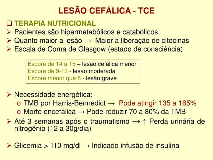 LESÃO CEFÁLICA - TCE