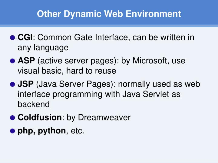 Other Dynamic Web Environment