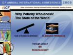 why polarity wholeness the state of the world