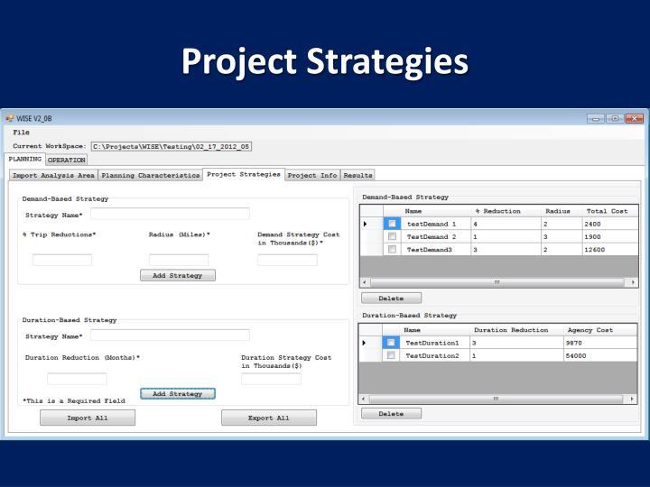 Project Strategies