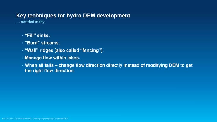 Key techniques for hydro DEM development