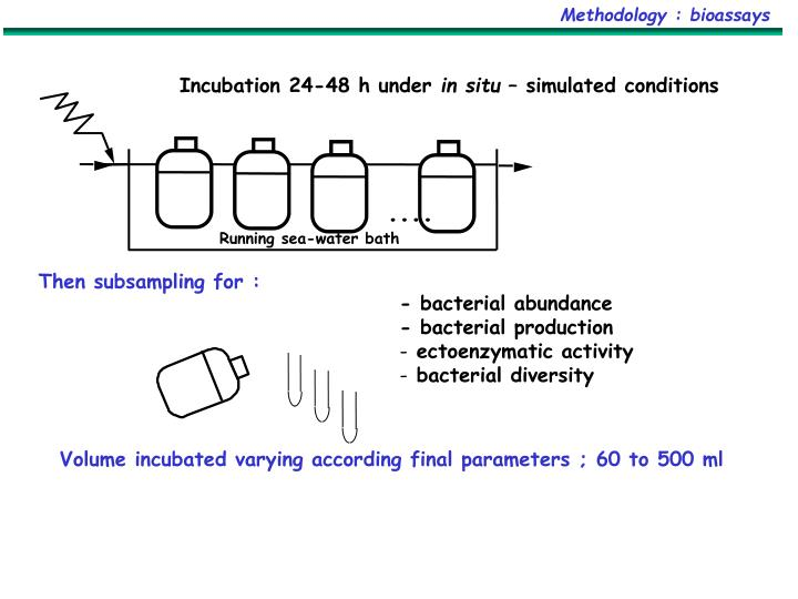 Methodology : bioassays