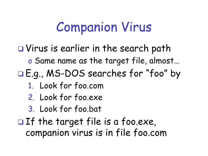 Companion Virus