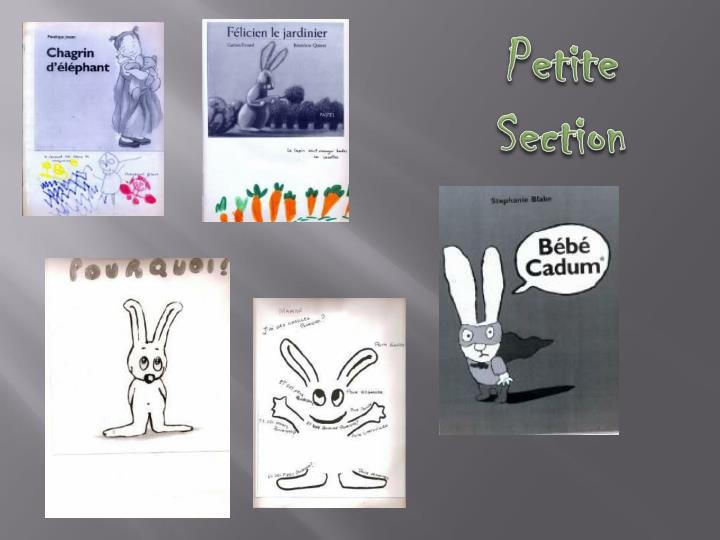 Petite Section
