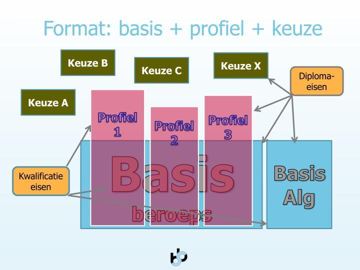 Format: basis + profiel + keuze