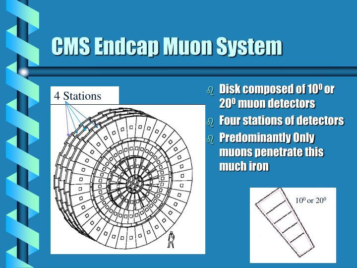 CMS Endcap Muon System