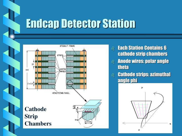 Endcap Detector Station