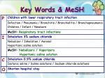 key words mesh