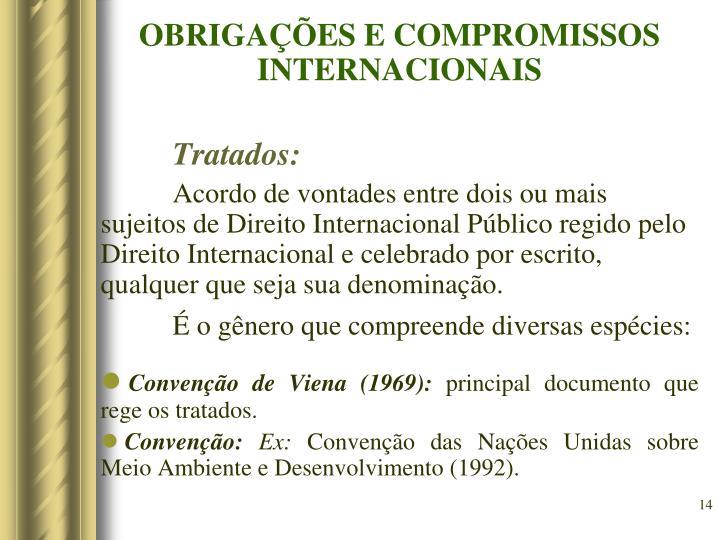 OBRIGAÇÕES E COMPROMISSOS INTERNACIONAIS
