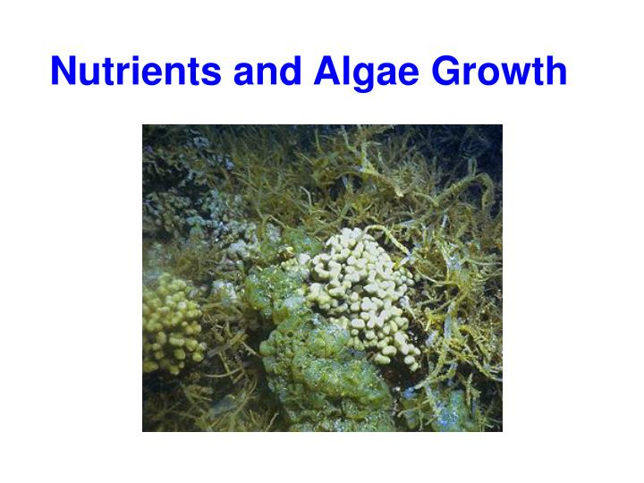 the environmental factors that affect the growth of coral reefs Ronmental factors to negatively affect calcification for  examine changes in coral growth over time for reefs which  in growth to environmental variables.