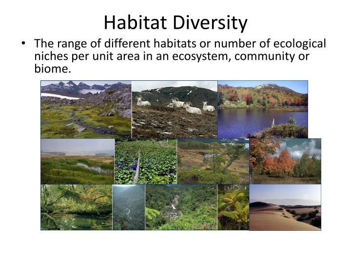 Habitat Diversity