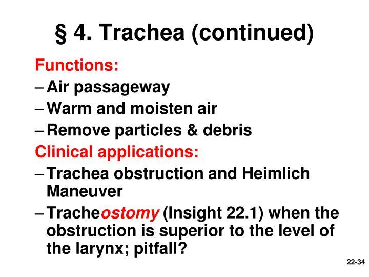 § 4. Trachea (continued)