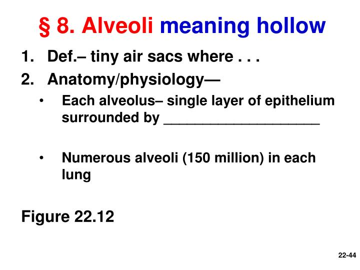 § 8. Alveoli
