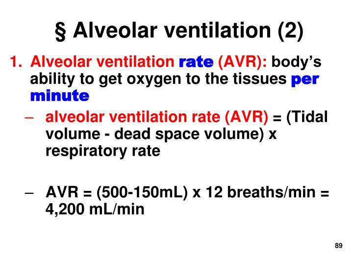 § Alveolar ventilation (2)