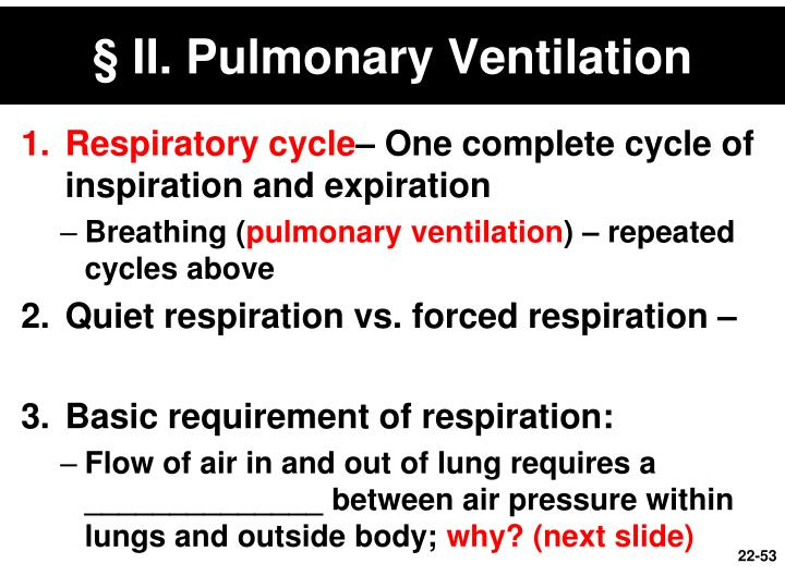 § II. Pulmonary Ventilation