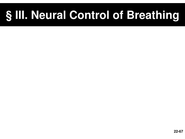 § III. Neural Control of Breathing