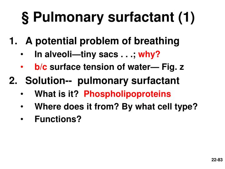 § Pulmonary surfactant (1)