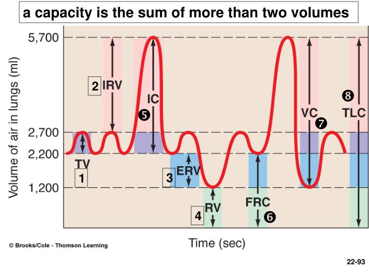a capacity is the sum of more than two volumes