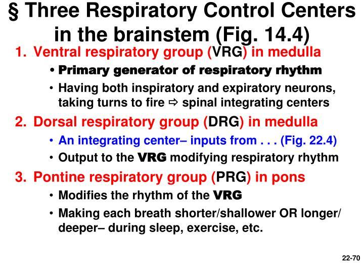 § Three Respiratory Control Centers