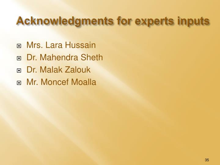 Acknowledgments for experts inputs