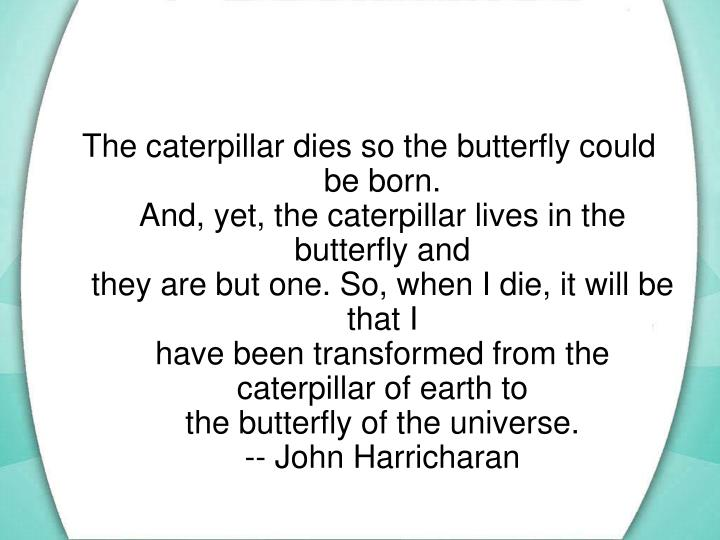 The caterpillar dies so the butterfly could be born.