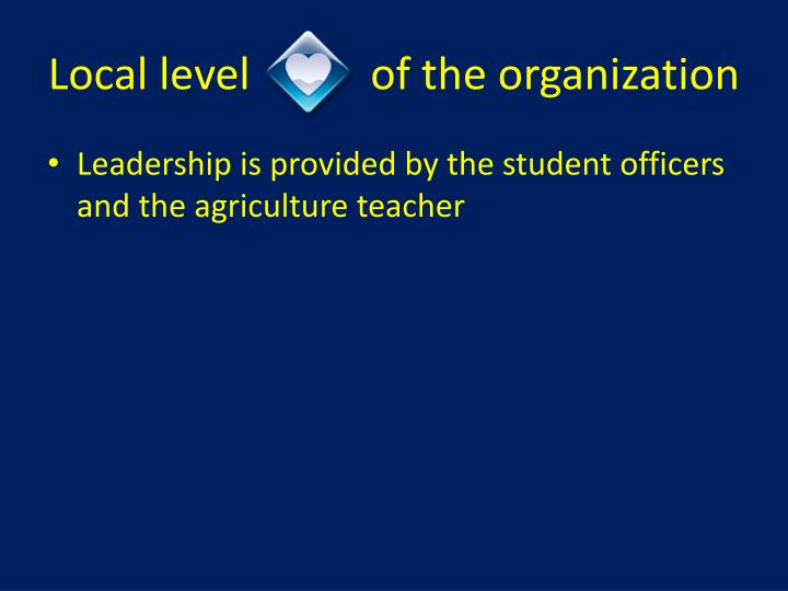 Local level           of the organization