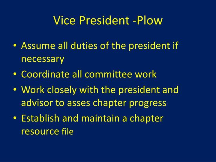 Vice President -Plow
