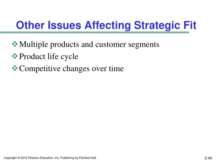 Other Issues Affecting Strategic Fit