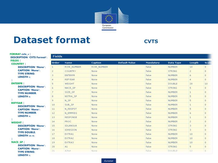 Dataset format