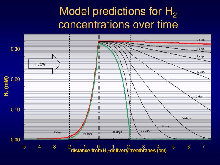 Model predictions for H