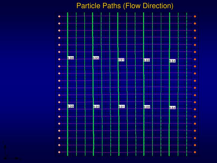 Particle Paths (Flow Direction)