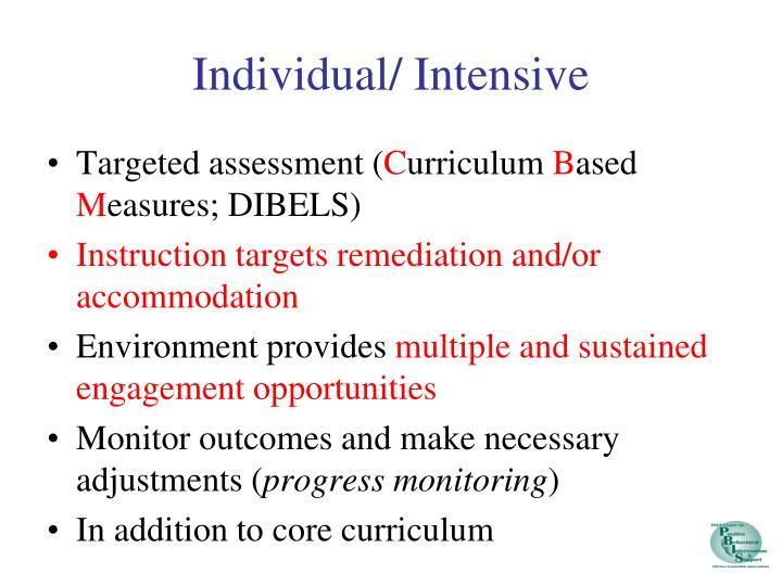 Individual/ Intensive