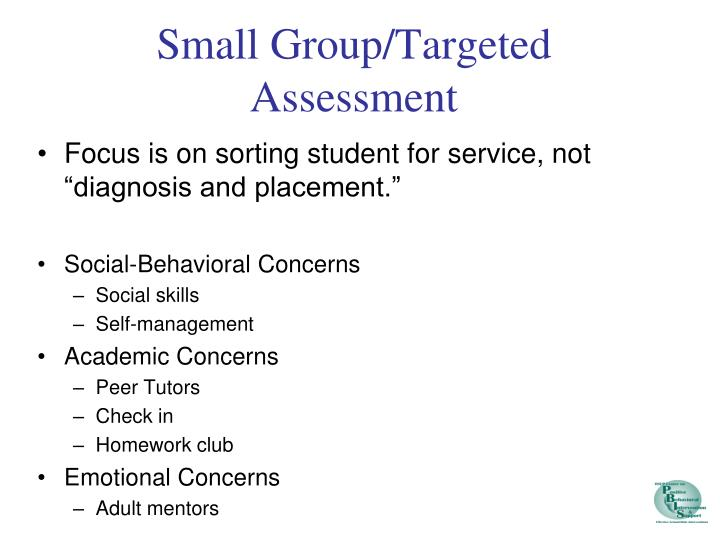 Small Group/Targeted