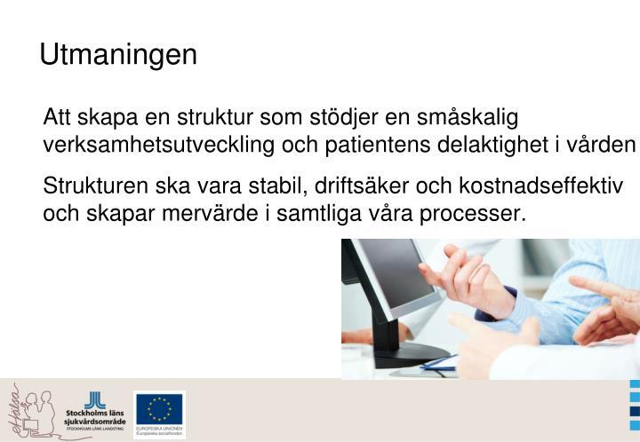 Att skapa en struktur som stödjer en småskalig verksamhetsutveckling och patientens delaktighet i vården