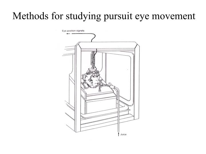 Methods for studying pursuit eye movement
